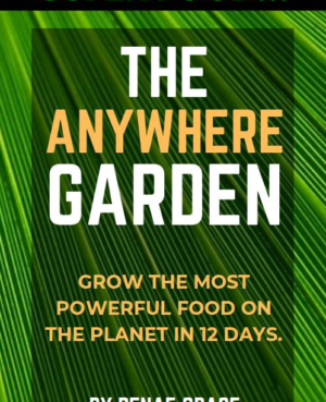 the anywhere garden